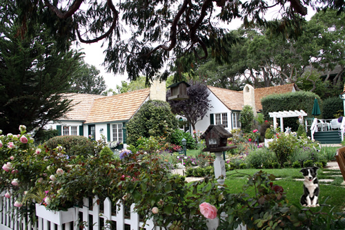carmel cottages in english gardens - pet friendly